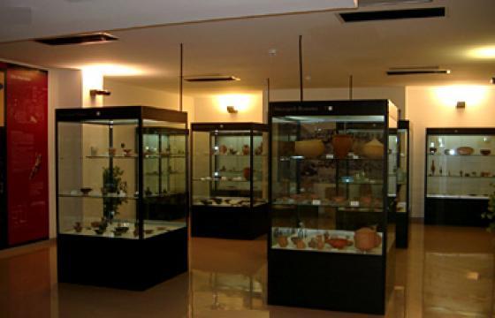 Le collezioni del Museo