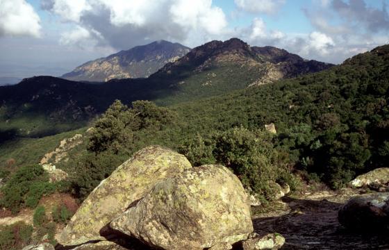 Paesaggio del Monte Arcosu