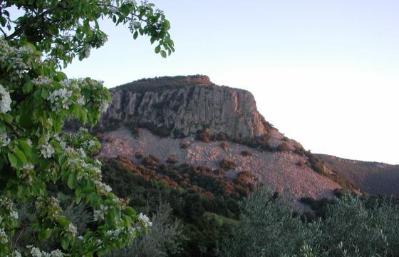 Perdadefogu, Parco comunale di Bruncu Santoru