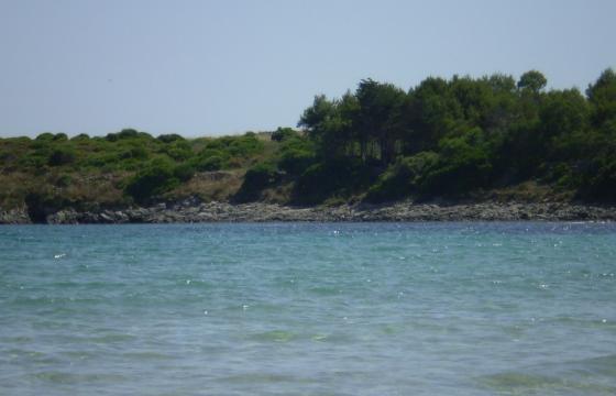 Carloforte, il mare di Guidi
