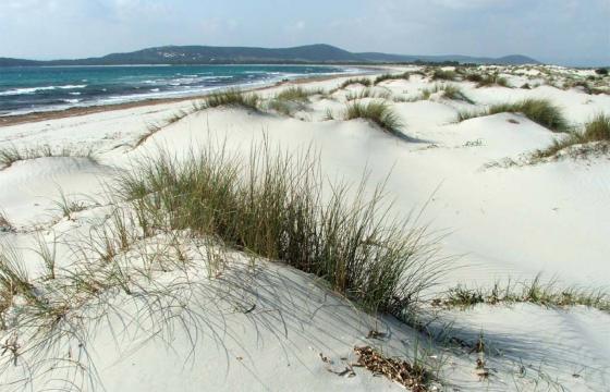 Teulada, dune di Porto Pino