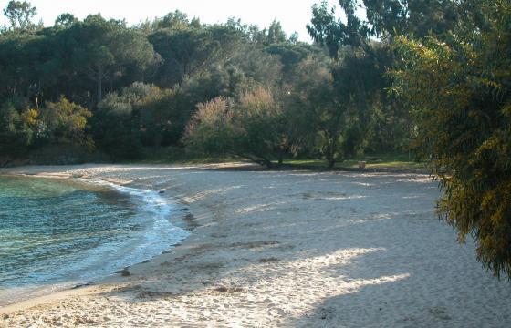 Palau, spiaggia di Cala Capra