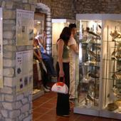 Siddi, Museo Ornitologico