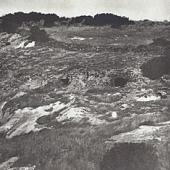 Max Leopold Wagner, Necropoli di Sas Concas, 1906