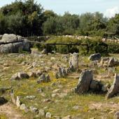 Arzachena, circoli di Li Muri