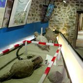 Villasimius, museo archeologico