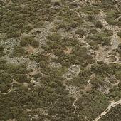 Dorgali, complesso dell'Arvu