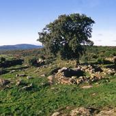 Teti, villaggio di S'Urbale