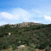 Monte dei Sette Fratelli [Ente foreste della Sardegna]