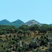 Sarule, Monte Gonare