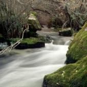 La forza impetuosa delle acque de Su Gologone