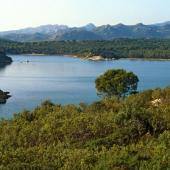 Panoramica dello stagno de Sa Curcurica