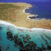 Sinis, isola di Mal di Ventre