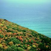 I colori della spiaggia di Torre dei Corsari