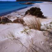 Villasimius, spiaggia di Notteri e sullo sfondo l'Isola dei Cavoli