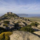 Isola dell'Asinara, the Castellaccio