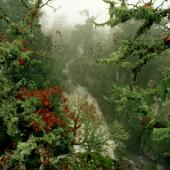 Bolotana, cascata di Mularza Noa