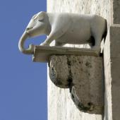 Particolare della Torre dell'Elefante [foto Alinari, Messina Elisabetta]