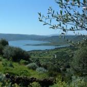 veduta lago omodeo autore frongia maurizio